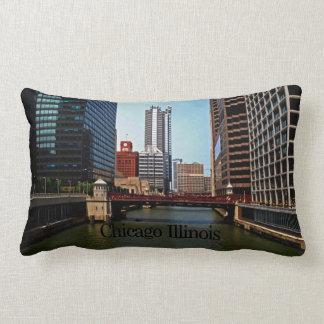 Scenes of Chicago Illinois Throw Pillow