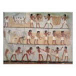 Scenes of sowing from the Tomb of Unsou Poster