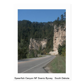 Scenic America Post Card Postcard