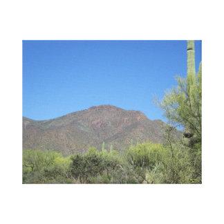 Scenic Apache Trail Canvas Print