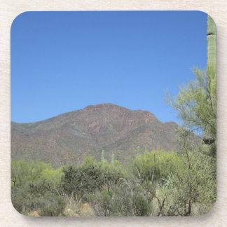Scenic Apache Trail Coaster