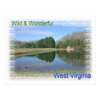 Scenic Appalachian Lake Postcard