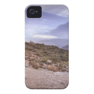 Scenic Arizona iPhone 4 Case-Mate Case