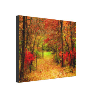 Scenic Autumn Path in Fores Stretched Canvas Print