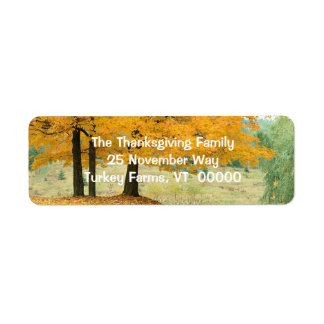 Scenic Autumn Photo Return Address Labels Sticker