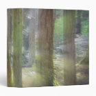 Scenic Beach State Park 3 Ring Binder