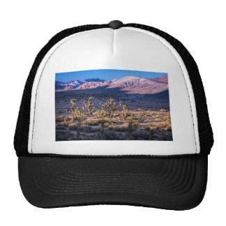 Scenic Canyon Twilight Trucker Hats