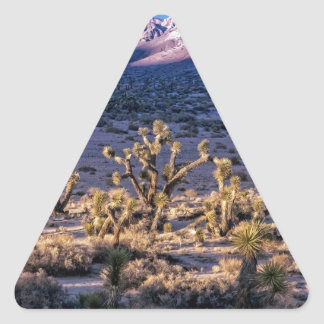 Scenic Canyon Twilight Triangle Sticker