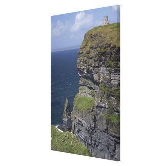 Scenic Cliffs of Moher and O'Brien's Tower Canvas Print