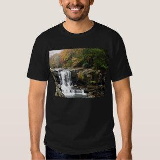 Scenic Creek & Falls Tee Shirt