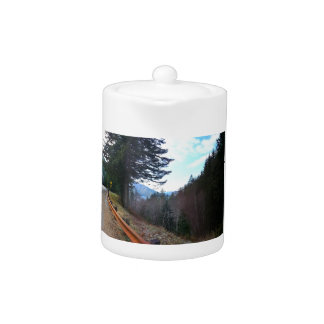 Scenic Drive Rt 101 Olympic National Park Teapot