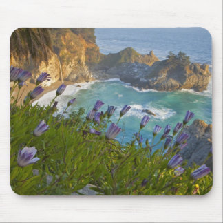 Scenic McWay Falls tumbles into the beach and Mouse Pad