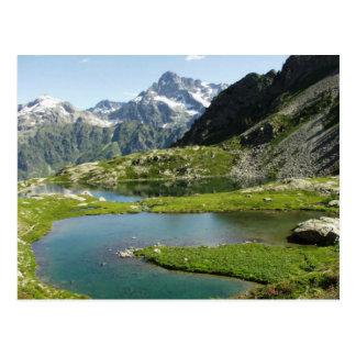 Scenic Mountain Stream Postcard