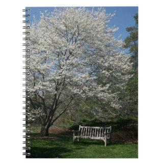 scenic notebook