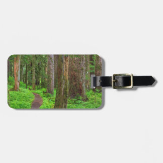 Scenic of old growth forest bag tag
