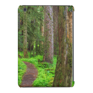 Scenic of old growth forest iPad mini retina cases