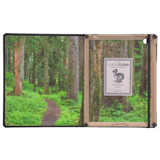 Scenic of old growth forest iPad cases
