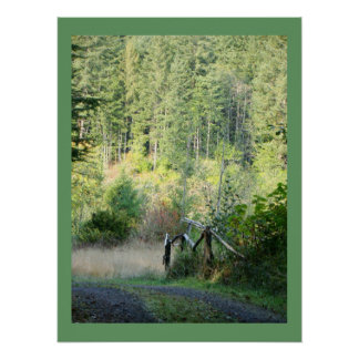 Scenic Oregon Forest Trees Country Photography Poster