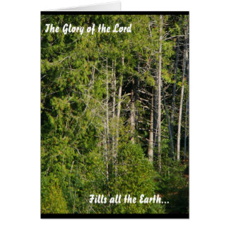 Scenic Oregon Glory of Lord Forest Meadow Nature Card