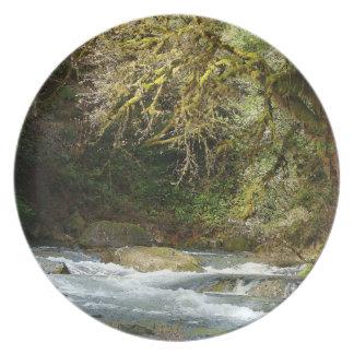 Scenic Oregon Nature Photography Plate