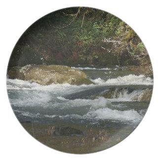 Scenic Oregon Nature River Photography Plate