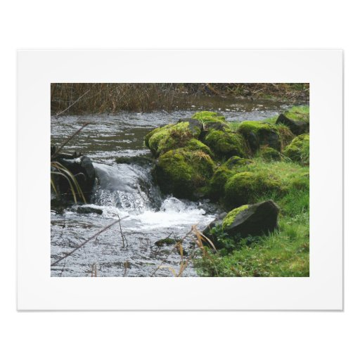 Scenic Oregon Photography Print Photo Print