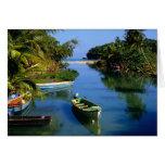 Scenic river near Ocho Rios in Jamaica Cards