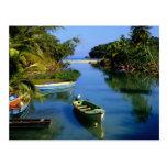Scenic river near Ocho Rios in Jamaica Postcard