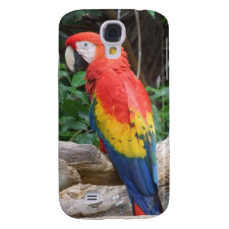 Scenic Scarlet Macaw iPhone 3 Case