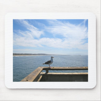 Scenic Seagull Mouse Pad