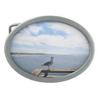 Scenic Seagull Oval Belt Buckle