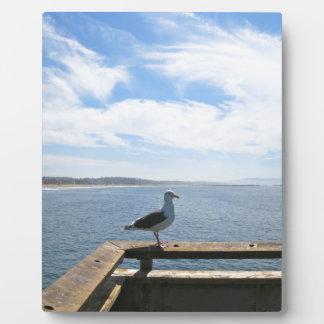 Scenic Seagull Plaque