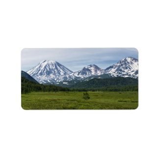 Scenic summer volcanic landscape and green forest label