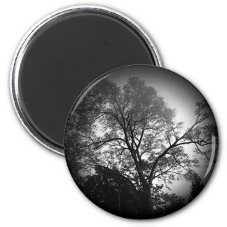 Scenic Tree Button 2 Inch Round Magnet