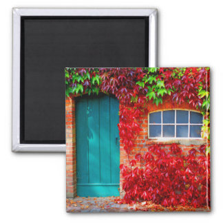 Scenic Turquoise Door with Vivid Autumn Leaves Magnet
