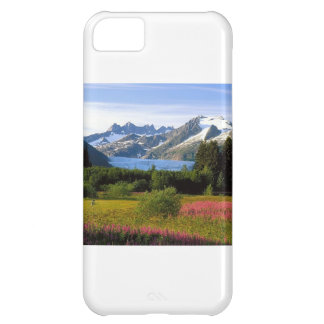 Scenic View iPhone 5C Cover