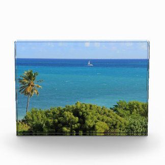 Scenic view of Caribbean Background Award