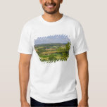 Scenic view of farmland south of Arcadia, 2 T-shirts