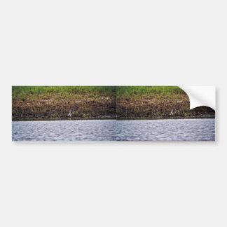 Scenic View of River Bank in Summer Car Bumper Sticker