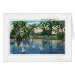 Scenic View of Swans on the Lake Cards