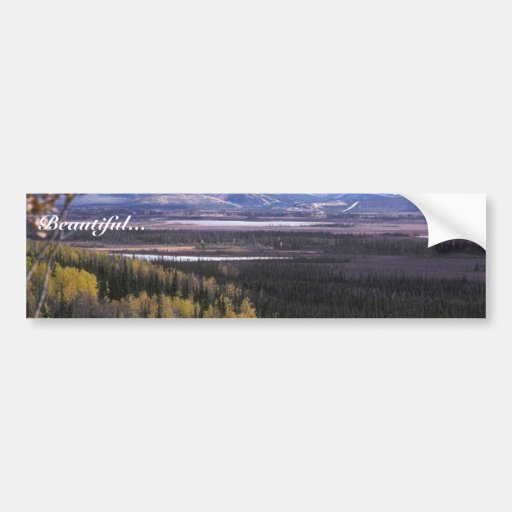 Scenic View of Tetlin National Wildlife Refuge Car Bumper Sticker