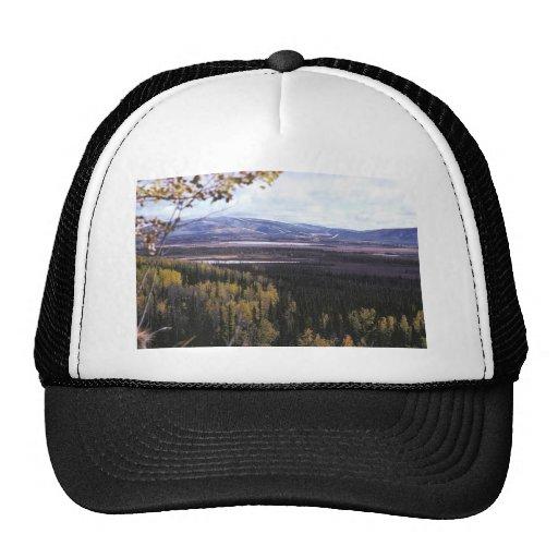 Scenic View of Tetlin National Wildlife Refuge Mesh Hat