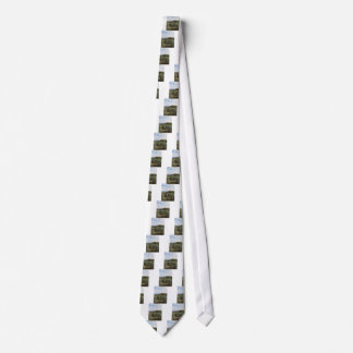 Scenic view of typical Tuscany landscape Tie