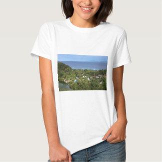 Scenic View over Apo Island Shirt