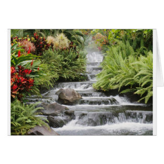 Scenic waterfall card
