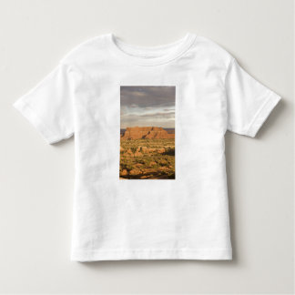 Scenic winter desert landscape on the way into toddler t-shirt