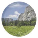 Scenic Yosemite Valley, California Plate
