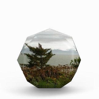 Scenics Kachemak Bay Acrylic Award