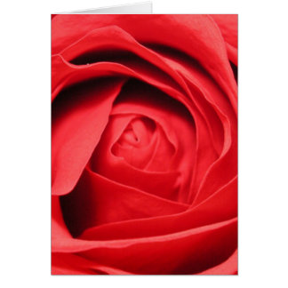 Scent of a Rose Card