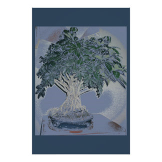 Bonsai Art Posters | Zazzle